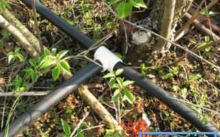 Как сделать водопровод в саду из пластиковых труб самостоятельно