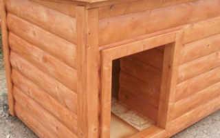 Как построить будку своей собаке: максимально простой способ для новичков