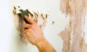 3 способа быстро и легко снять с любой поверхности масляную краску
