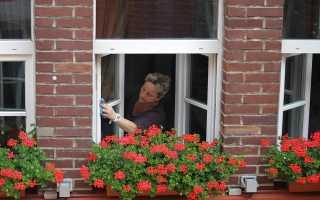 Как правильно мыть пластиковые окна, чтобы они не портились