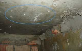 Вентиляция в погребе в гараже: как правильно сделать?